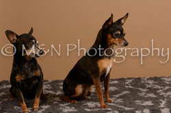 M&N Photography -_SNB0549