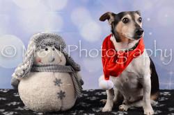 M&N Photography -DSC_6647