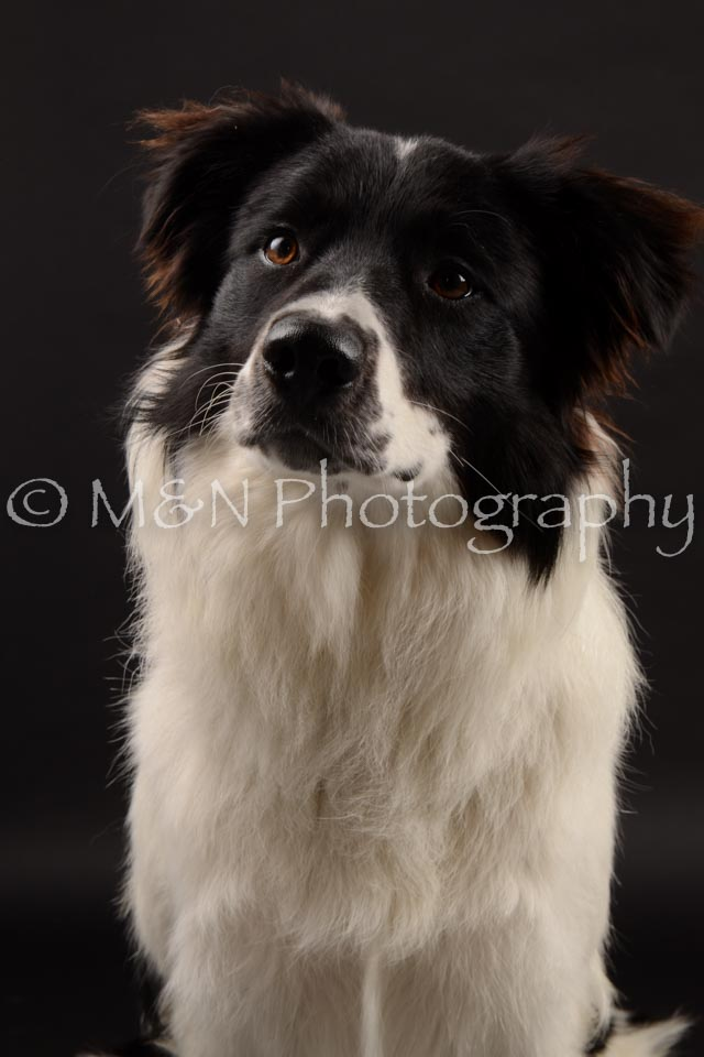 M&N Photography -DSC_9715