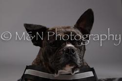 M&N Photography -DSC_1901