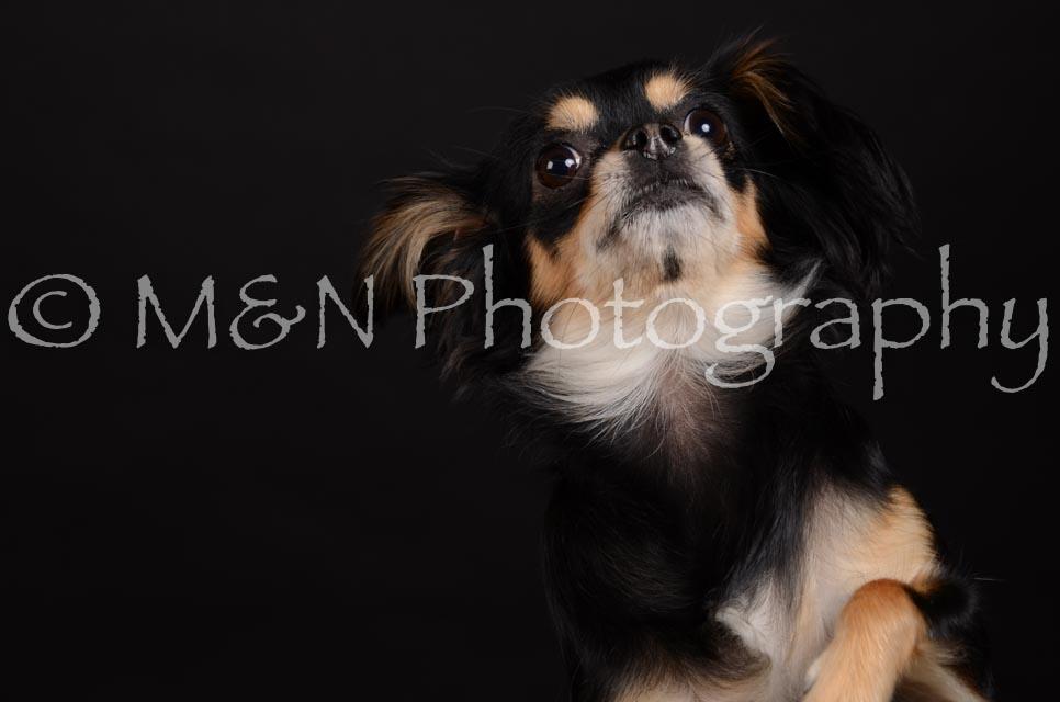 M&N Photography -DSC_5757