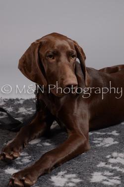 M&N Photography -DSC_2600
