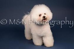 M&N Photography -DSC_3888