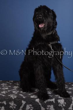 M&N Photography -DSC_4975