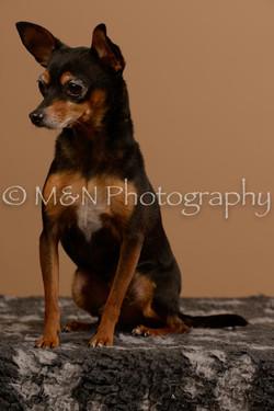 M&N Photography -_SNB0561