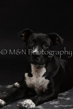 M&N Photography -DSC_2664