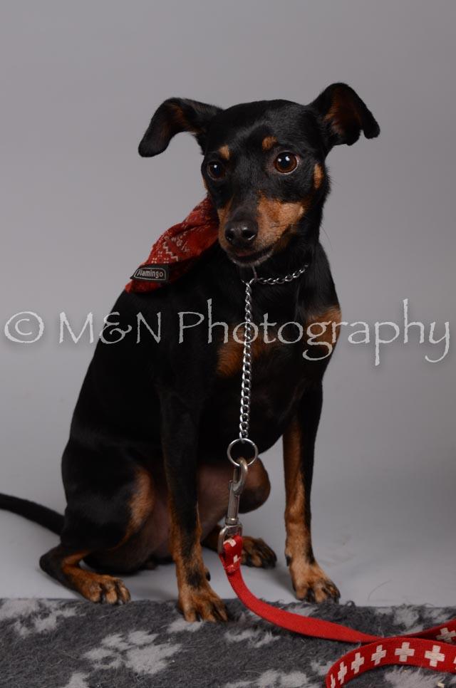 M&N Photography -DSC_2804