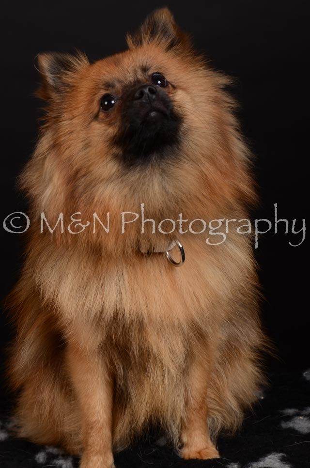 M&N Photography -DSC_5861