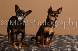 M&N Photography -_SNB0554