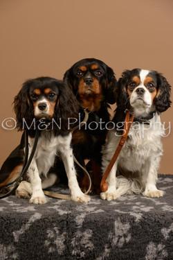 M&N Photography -_SNB0922