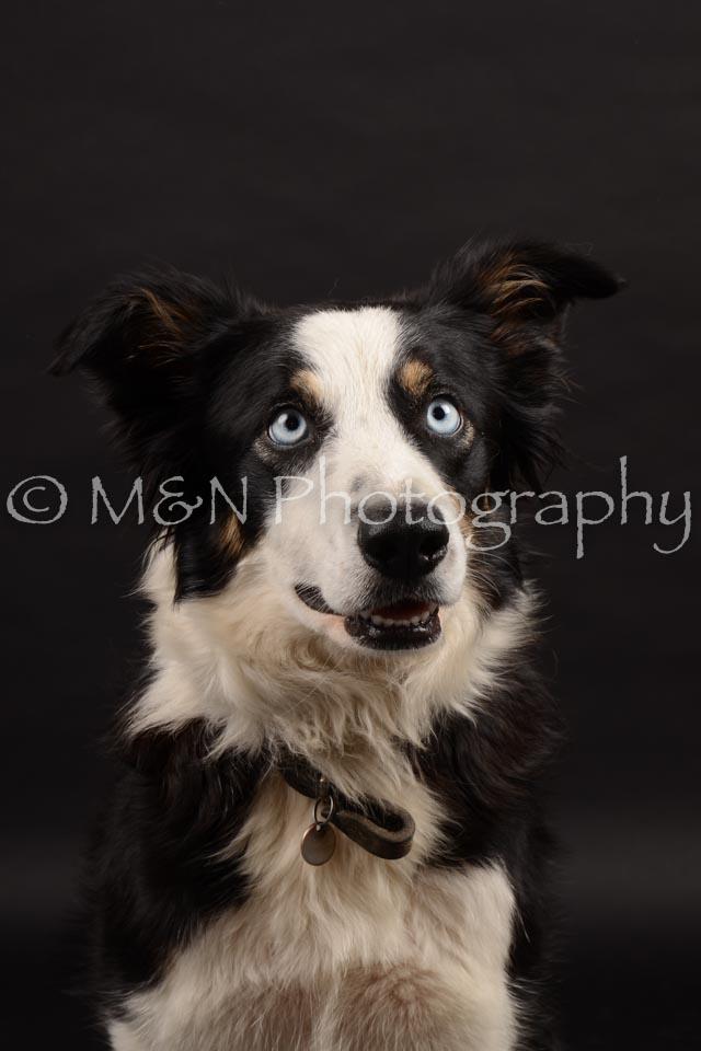 M&N Photography -DSC_9946