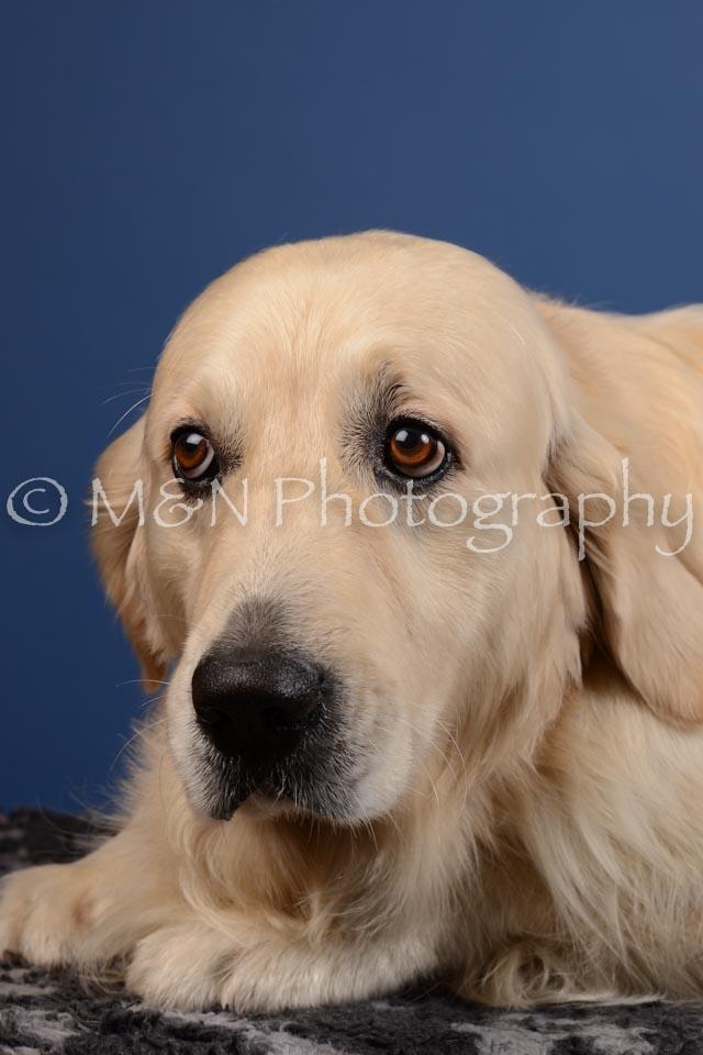 M&N Photography -DSC_5273
