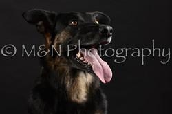 M&N Photography -DSC_2725
