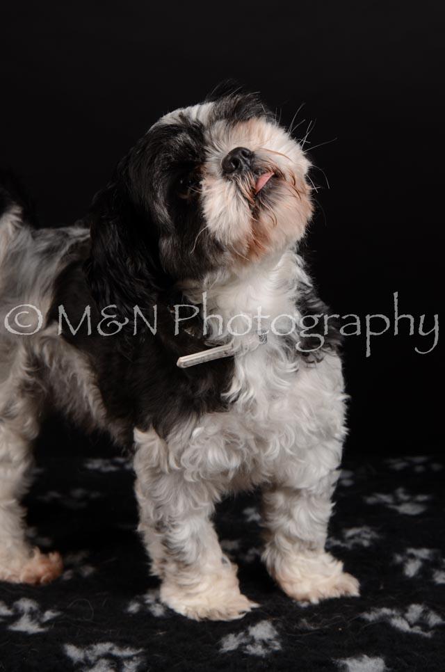 M&N Photography -DSC_5773