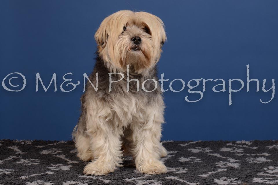 M&N Photography -DSC_4943