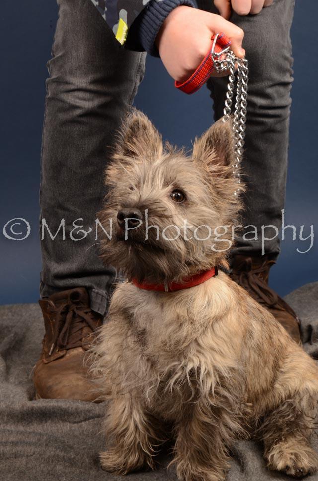 M&N Photography -DSC_4222