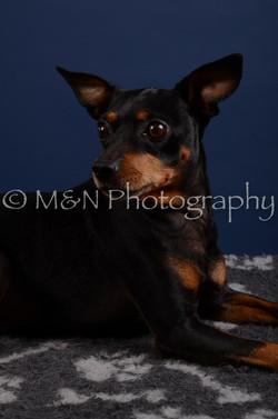M&N Photography -DSC_3865