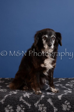 M&N Photography -DSC_4887