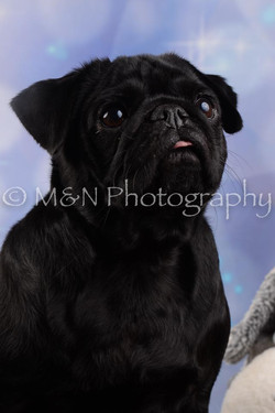 M&N Photography -DSC_6608
