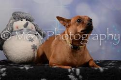 M&N Photography -DSC_6482
