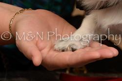 M&N Photography -_SNB0747