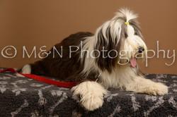M&N Photography -_SNB0601