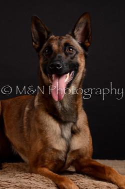 M&N Photography -DSC_5575