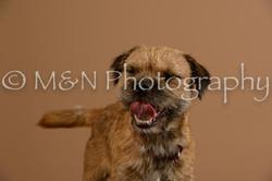 M&N Photography -_SNB0526