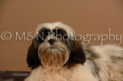 M&N Photography -_SNB0489