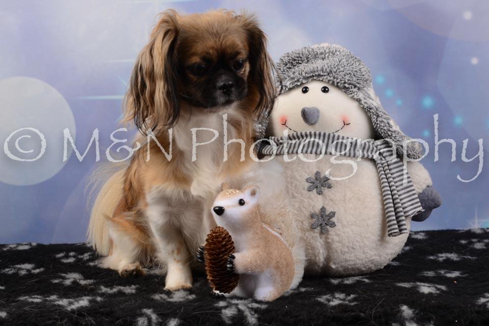 M&N Photography -DSC_6691
