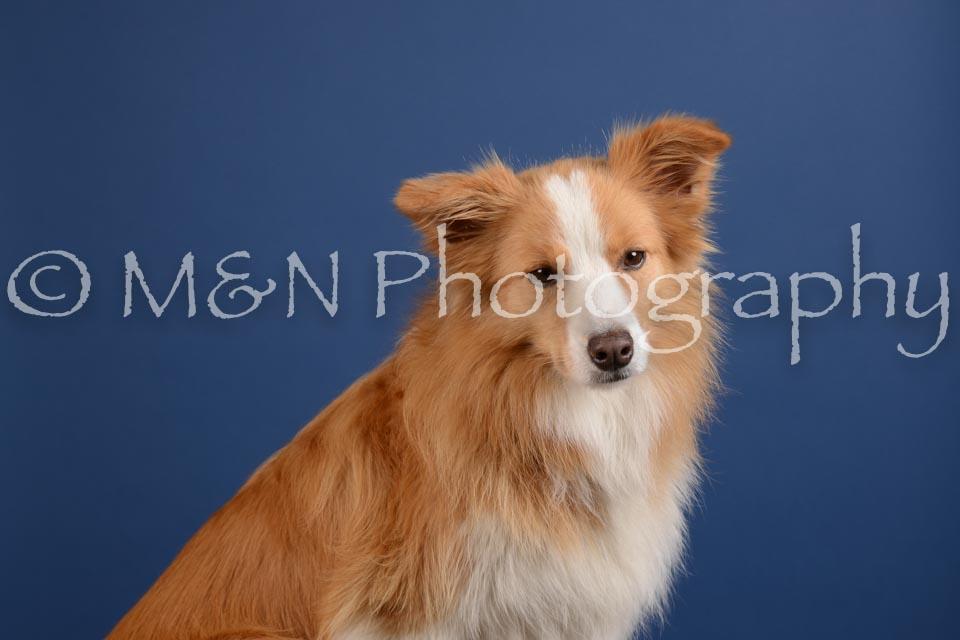 M&N Photography -DSC_4884