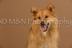 M&N Photography -_SNB0697