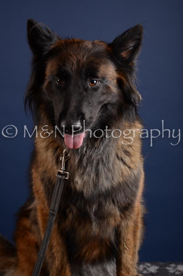 M&N Photography -DSC_4378