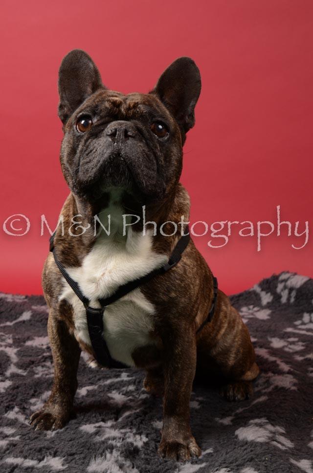 M&N Photography -DSC_6634