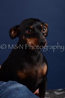 M&N Photography -DSC_3817