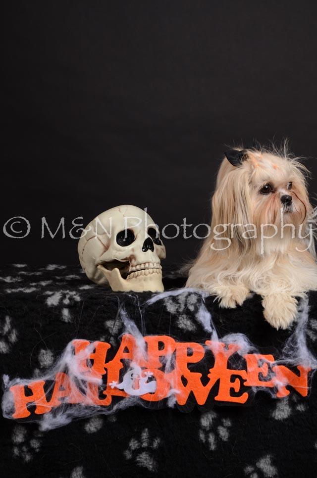 M&N Photography -DSC_5730