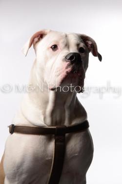 M&N Photography -DSC_8761