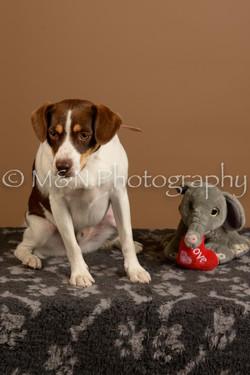M&N Photography -_SNB0843