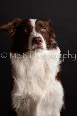 M&N Photography -DSC_5886