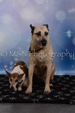 M&N Photography -DSC_7139