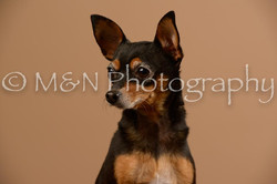 M&N Photography -_SNB0557
