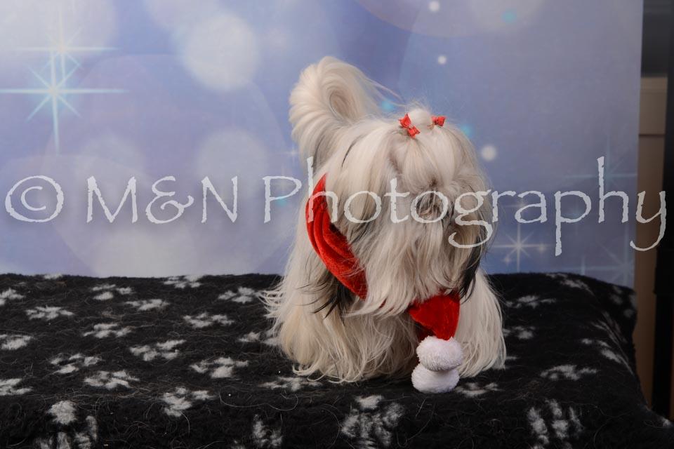 M&N Photography -DSC_7156