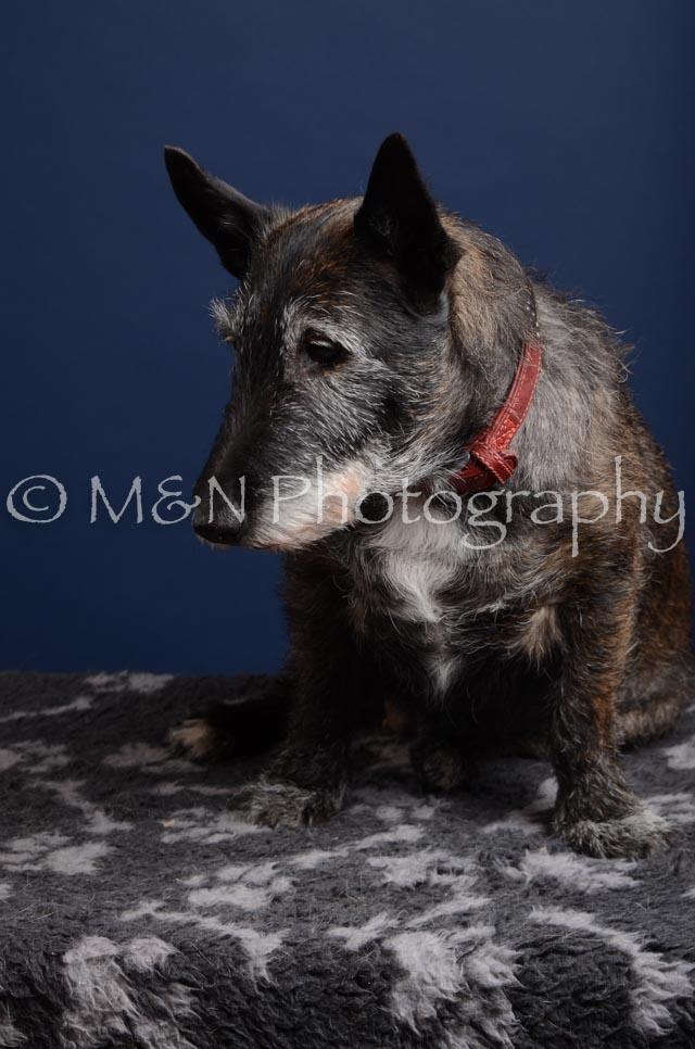 M&N Photography -DSC_3883