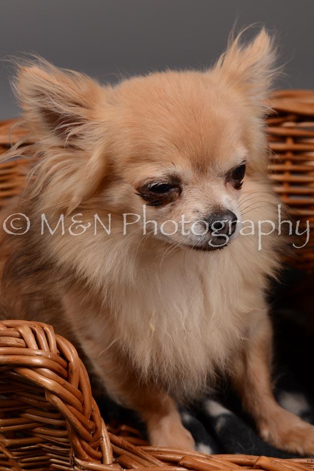 M&N Photography -DSC_1827