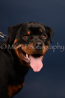 M&N Photography -DSC_3758