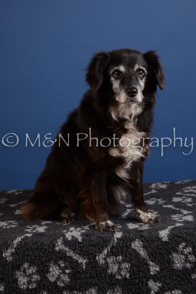 M&N Photography -DSC_4891