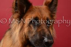 M&N Photography -DSC_6836