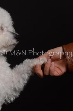 M&N Photography -DSC_5603-2