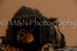 M&N Photography -_SNB0676