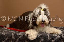 M&N Photography -_SNB0602
